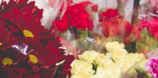 photo of flowers on bucket 977913