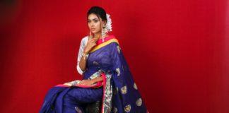 Paithani sarees 02